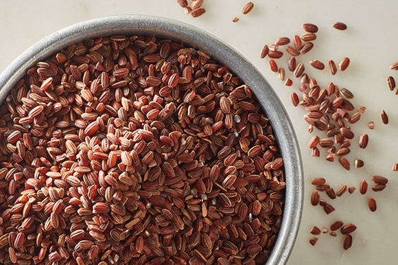 sprouted sienna red rice in metal bowl overhead