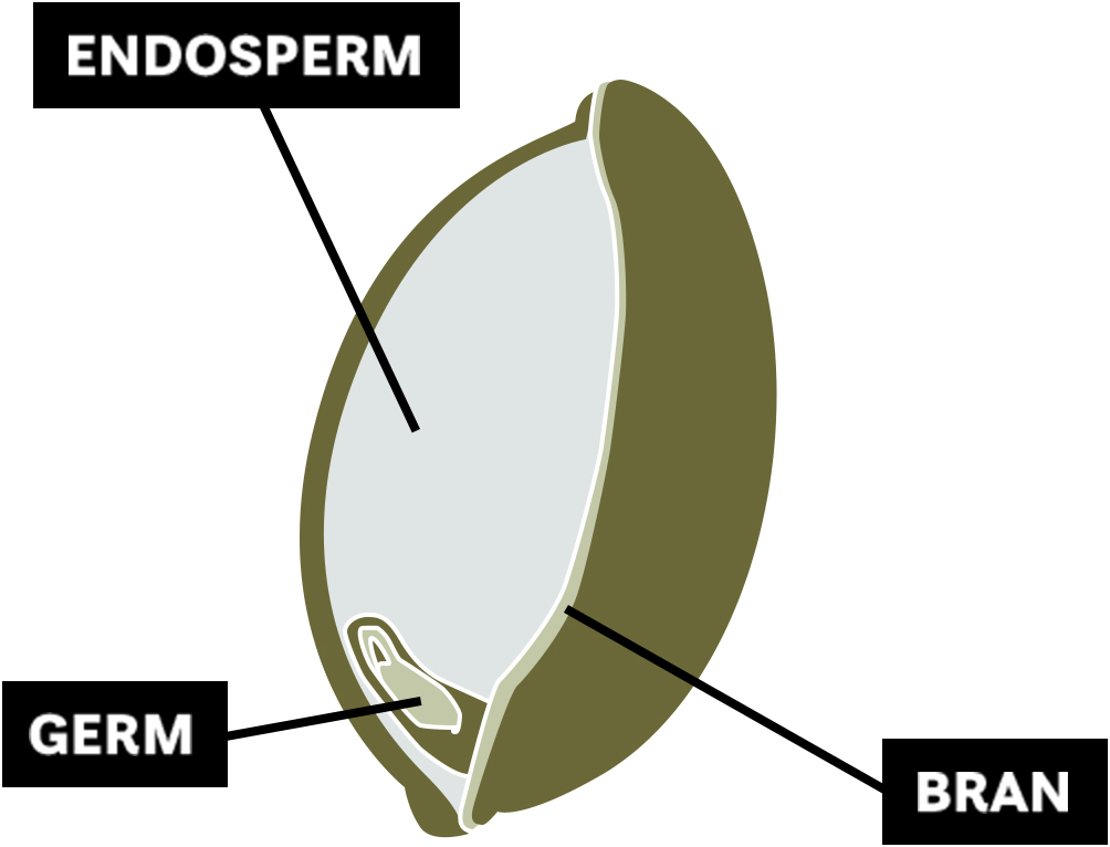 Intact Grains diagram